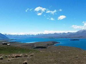 Letzter Blick auf den Lake Tekapo