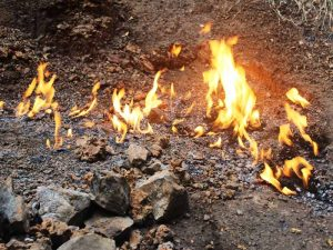 Natural Flames in Murchison