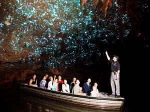 Die Glühwürmchenhöhlen von Waitomo