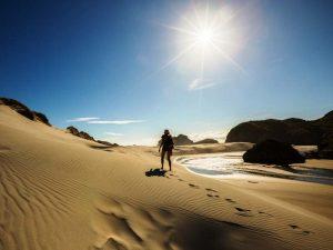 Kilometerlange Sandstrände auf Farewell Spit