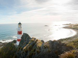 Aussicht auf den Leuchtturm am Cape Palliser