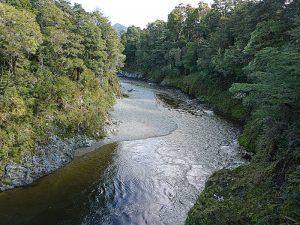 Pelorus River, Drehort der Fass Szene aus dem Hobbit - Herr der Ringe Drehorte