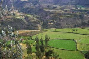 Wanderung Blick über das Colca Tal Peru