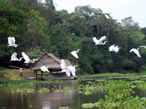 Ausflug Amazonas Landschaft Nordperu
