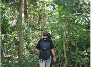 amazonas-wanderung