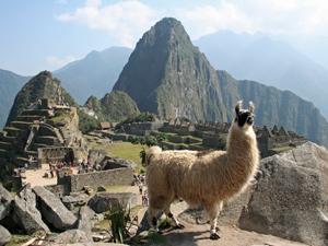Blick auf Machu Picchu bei 3-wöchiger Peru Rundreise