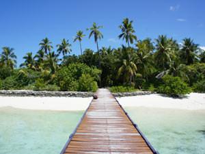 rondreis Sri Lanka Malediven - paradijs