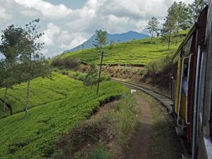 Ella Sri Lanka - treinreis