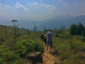 Sri Lanka - theeheuvels