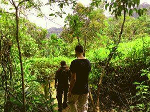 Sinharaja regenwoud Sri Lanka trekking