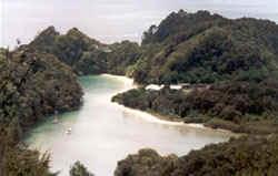 lagoon nieuw zeeland