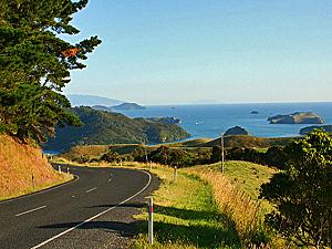 Nieuw Zeeland reis Coromandel autoweg