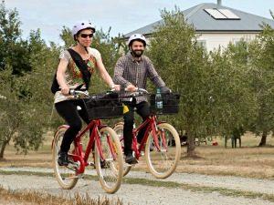 fietsen tussen wijnranken nieuw zeeland