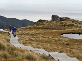 Humpridge Track - wandeling Nieuw Zeeland