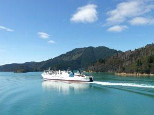 noordereiland ferry zuidereiland nieuw zeeland