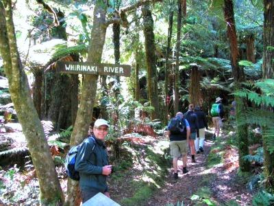nieuw zeeland maori forest trail
