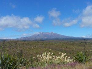 nieuw zeeland reis tongariro national park