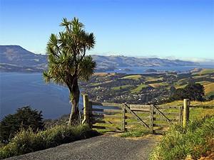Akaroa - Rondreis Nieuw-Zeeland Zuidereiland