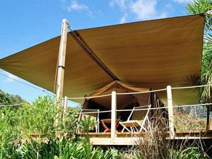 Nieuw Zeeland reis Noordereiland - safari