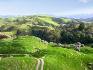 waitomo landschap nieuw zeeland