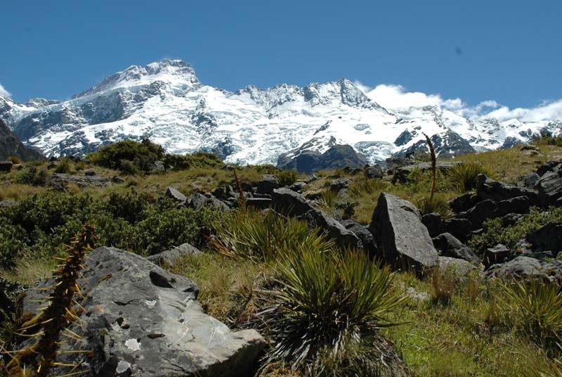 Nieuw Zeeland vakantie - landschap