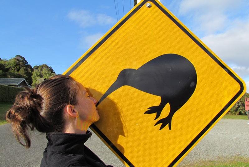 Bord met kiwi op Stewart island