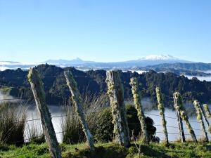 whanganui rivier uitzicht