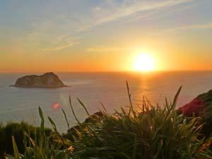 Nieuw-Zeeland-reis Oostkaap