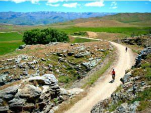 Op de fiets Central Otago ontdekken