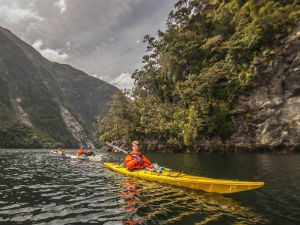 Kajakken door het water van Doubtful Sound