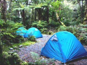 Kamperen in de Nieuw-Zeelandse wildernis