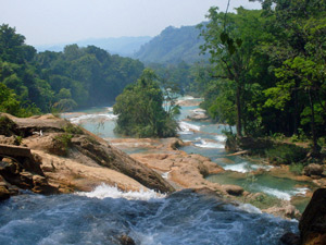 agua azul waterval mexico