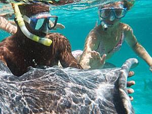 belize rondreis snorkelen roggen