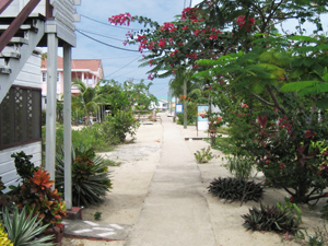 belize rondreizen placencia