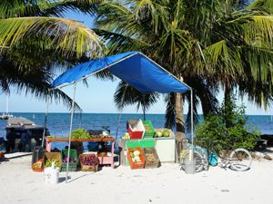 Fruittent - Caye Caulker Belize