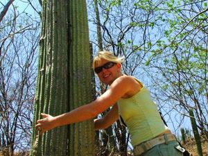 grote cactus platteland mexico