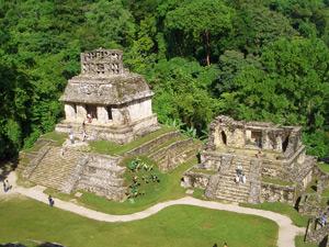 jungletempel palenque mexico