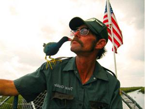 Erleben Sie die Everglades vom Airboat aus