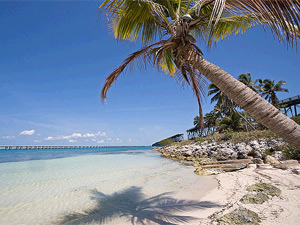 Strand an den Upper Keys