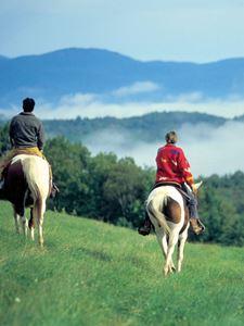 Mit dem Pferd durch die grüne Landschaft reiten