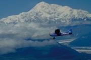 Abenteuer Alaska – von Gletschern zu Fjorden