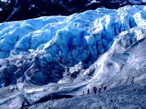 Copyright: Ciri Alaska Tourism Kenai Fjords Nationalpark