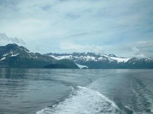 Kenai Fjords Nationalpark bei Seward