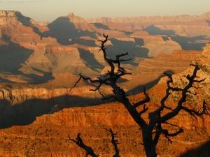 Tanz der Farben beim Sonnenuntergang am Grand Canyon