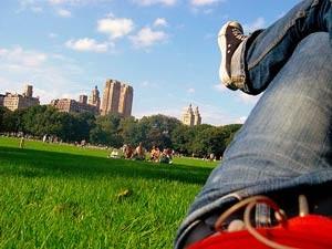 Ein grünes Fleckchen in New York
