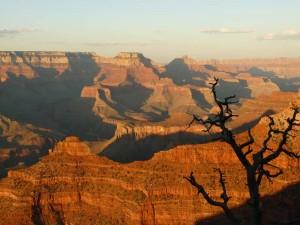 Blick auf die Schluchten des Grand Canyon