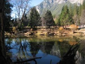 Seeufer und Bäume vor Bergkulisse