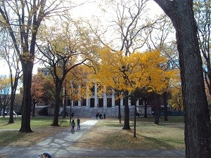 Die berühmte Universität Harvard lädt zum Spazieren ein