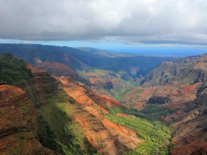 Blick über den Waimea Canyon