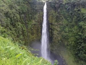 Blick auf den Akaka Wasserfall auf Big Island